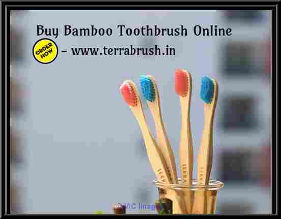 Buy Eco friendly Toothbrush Online | Wooden Toothbrush – Terrabrush.in atlanta